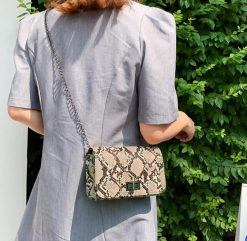 sac à main serpent beige gris à bandoulière classe
