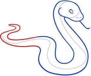 Comment dessiner un serpent méthode 1 étape 5