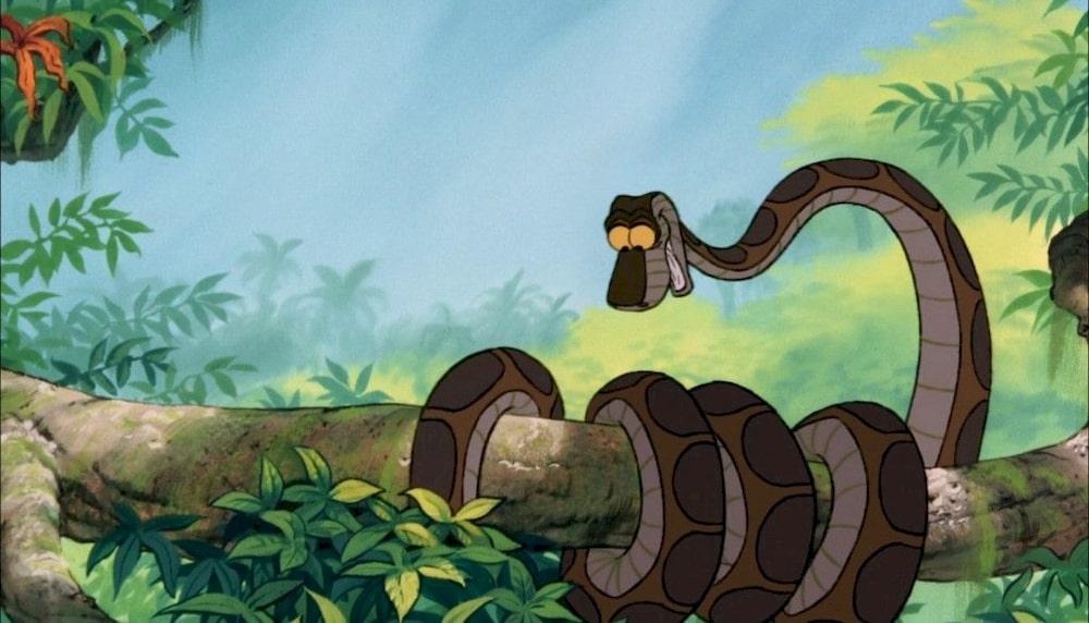 livre de la jungle kaa enroulé